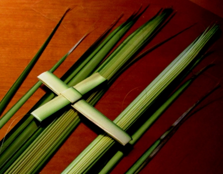 Palm Sunday!